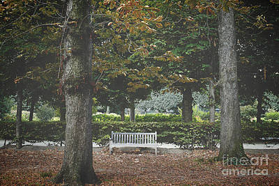 Of Autumn Photograph - Lone Bench At The Rodin Museum Paris by Ivy Ho