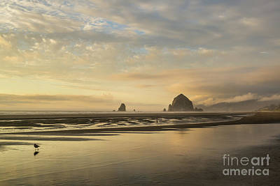 Abstract Shapes Janice Austin Royalty Free Images - Sunset at Haystack rock Royalty-Free Image by Paul Quinn