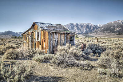 Photograph - Lone Cabin by Charles Garcia