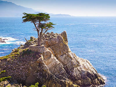 Pebble Beach Photograph - Lone Cypress by Lutz Baar