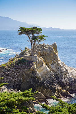 Photograph - Lone Cypress Pebble Beach by Lutz Baar
