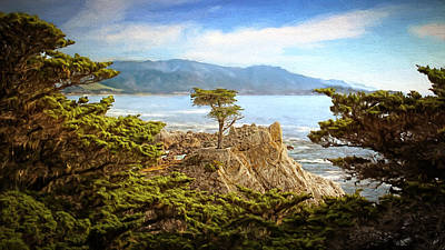 Photograph - Lone Cypress by Susan Rissi Tregoning