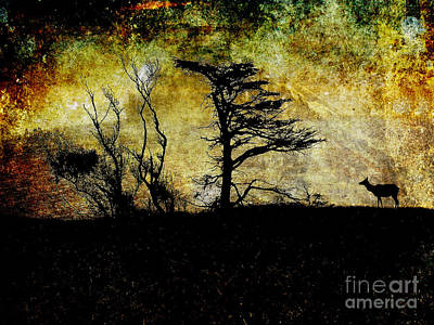 Lone Elk Of Tomales Bay . Texture Art Print by Wingsdomain Art and Photography