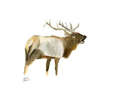 Painting - Lone Elk by Sara Stevenson