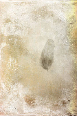 Photograph - Lone Feather by Randi Grace Nilsberg