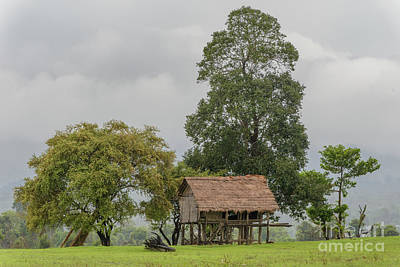 Photograph - Lone House by Werner Padarin
