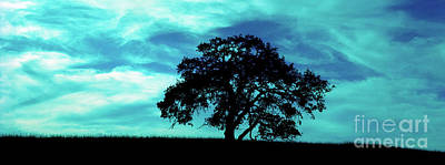 Art Print featuring the photograph Lone Oak by Jim and Emily Bush