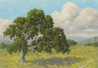 Painting - Lone Oak by Marv Anderson