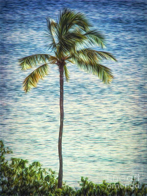 Photograph - Lone Palm  ... by Chuck Caramella