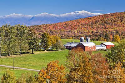 Photograph - Lone Pine Farm Autumn by Alan L Graham