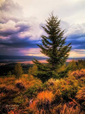Photograph - Lone Pine - Grand Teton Range ... by Chuck Caramella