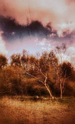 Photograph - Lone Ranger by Isabella F Abbie Shores