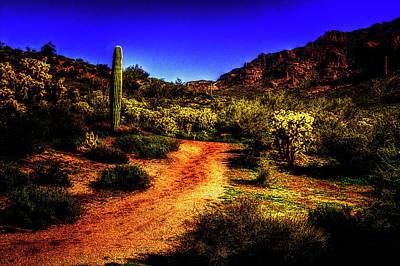 Photograph - Lone Saguaro Among Cholla by Roger Passman