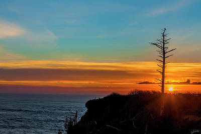 Photograph - Lone Snag At Sunset by Dee Browning