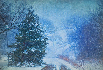 Photograph - Lone Snowy Lane by Anna Louise