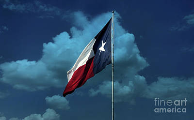 Photograph - Lone Star by Joan Bertucci