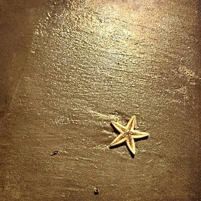 Photograph - Lone Starfish On The Beach by Debra Martz
