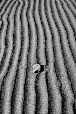 Photograph - Lone Stone by Christopher Rees