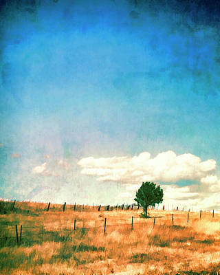 Photograph - Lone Tree by Ann Powell