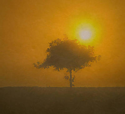 Painting - Lone Tree At Sunrise by Dan Sproul
