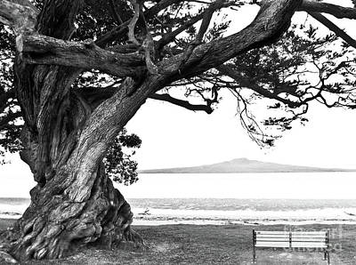 Lone Tree Bench And Volcano Art Print by Yurix Sardinelly