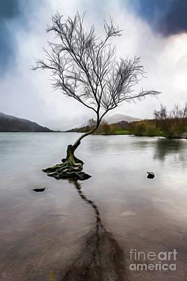 Photograph - Lone Tree Llanberis Lake by Adrian Evans
