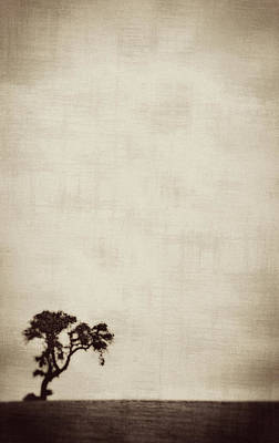 Photograph - Lone Tree No. 01 by Pictorial Decor
