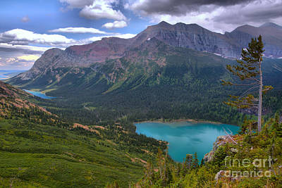 Photograph - Lone Tree Over Grinnell Lake by Adam Jewell