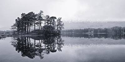 Photograph - Lone Trees by Stephen Taylor