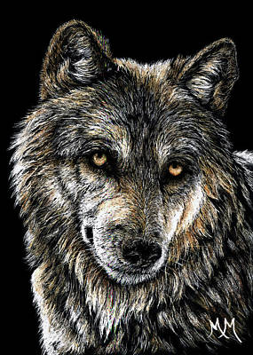 Drawing - Lone Wolf by Monique Morin Matson