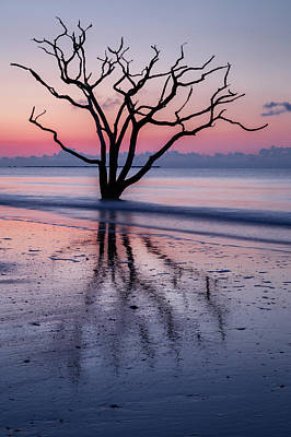 Edisto Island Photograph - Loneliness by Mike Lang