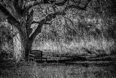 Lonely Bench Art Print