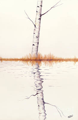 Christmas Patents Rights Managed Images - Lonely Birch Tree Royalty-Free Image by Christopher Shellhammer