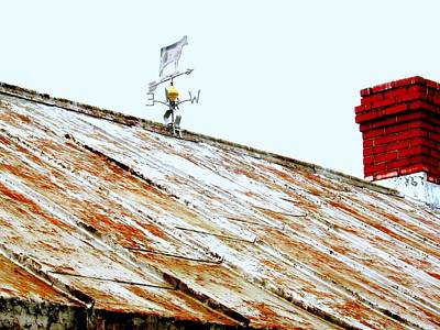 Lonely Cow Stuck On Roof Forever Art Print