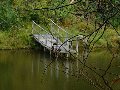 Photograph - Lonely Dock On Trout River by Catherine Gagne