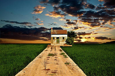 Art Print featuring the photograph Lonely Farm House  by Harry Spitz