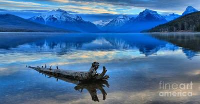 Photograph - Lonely Log by Adam Jewell