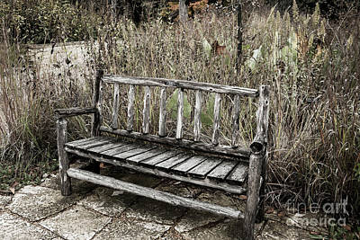 Photograph - Lonely by Tina Hailey