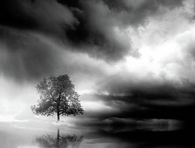 Digital Art - Lonely Tree And Dramatic Sky - Black And White by Lilia D