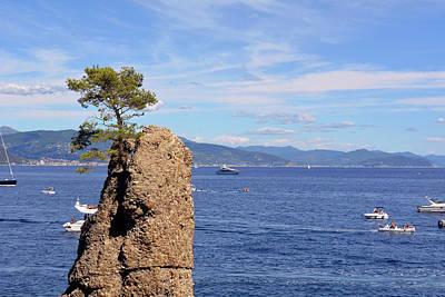 Park Portofino Italy Photograph - Lonely Tree And The Blue Sea From Portofino by Oana Unciuleanu