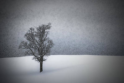 Mystical Landscape Digital Art - Lonely Tree Idyllic Winterlandscape by Melanie Viola