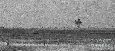 Mixed Media - Lonely Tree Pano Painterly Grayscale by Jennifer White