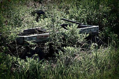 Photograph - Lonely Wagon by Susie Weaver