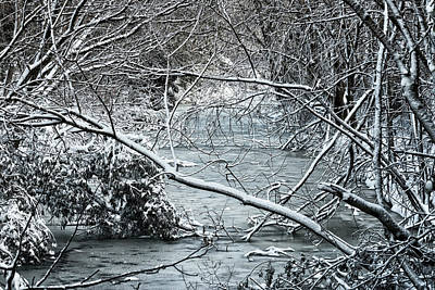 Photograph - Lonely Winter by Travis Rogers