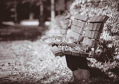 Photograph - Lonesome by Hyuntae Kim