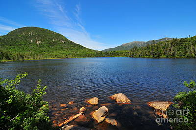 Lonesome Lake Art Print by Catherine Reusch Daley