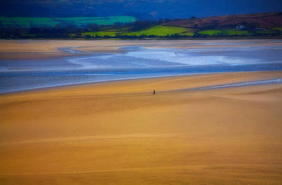 Lonesome Man Walking On Sand Beach Art Print by Panoramic Images