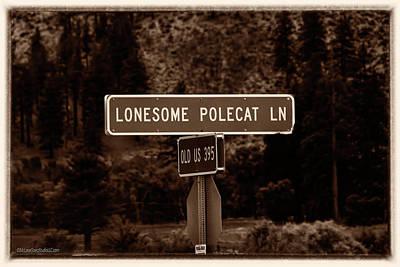 Photograph - Lonesome Polecat Lane by LeeAnn McLaneGoetz McLaneGoetzStudioLLCcom