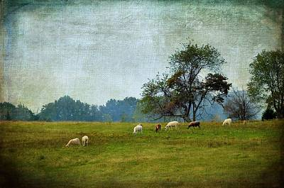 Country Scene Digital Art - Long Ago And Far Away by Jan Amiss Photography