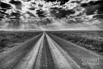 Photograph - Long And Lonely by David Cutts